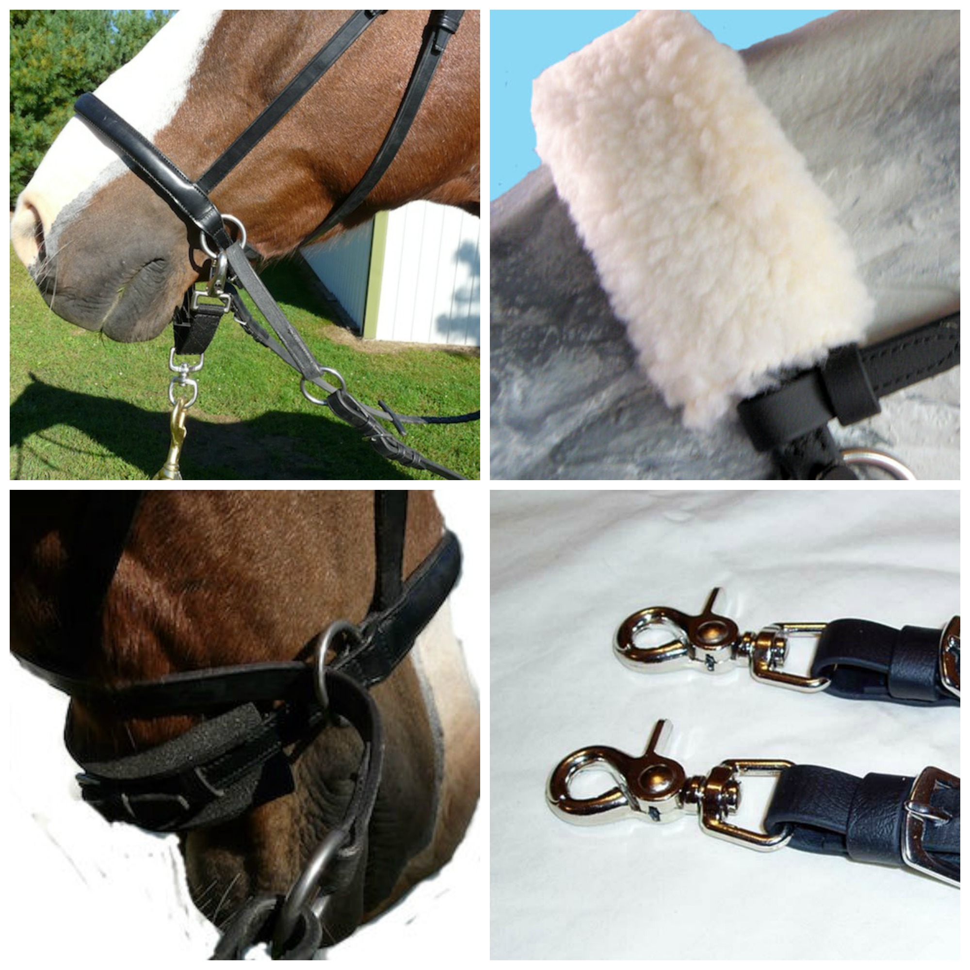Bitless Bridle Accessory Package